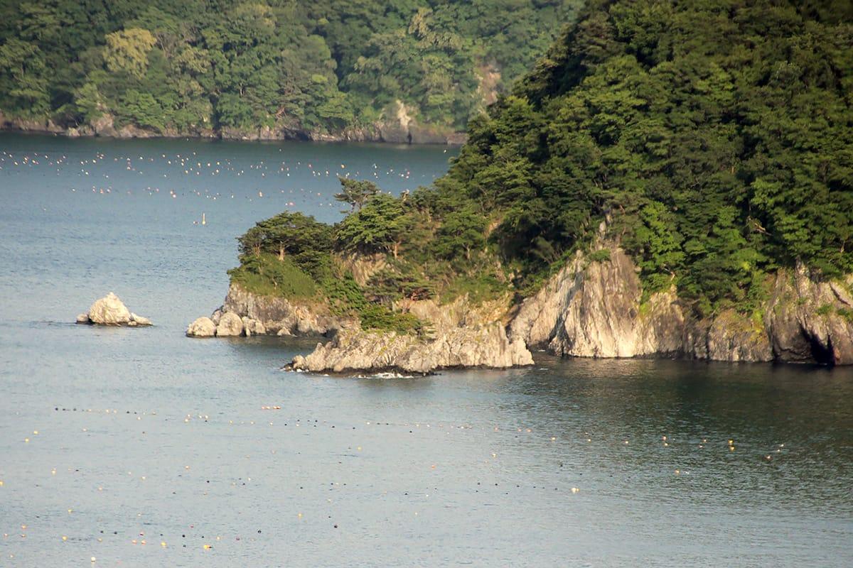艦砲射撃と釜石湾に沈んだ駆潜艇釜石の注目トピックス