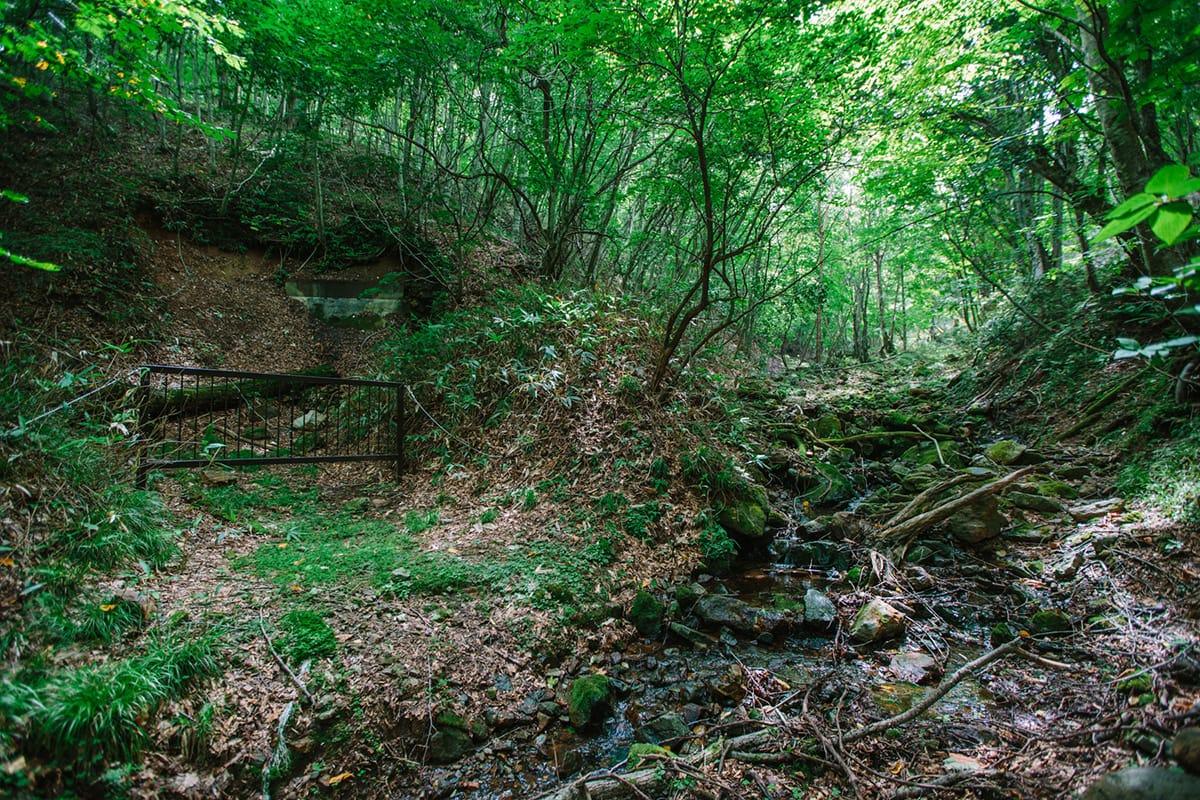 釜石鉱山の坑道入口