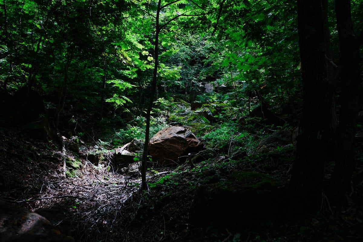 半地下坑跡