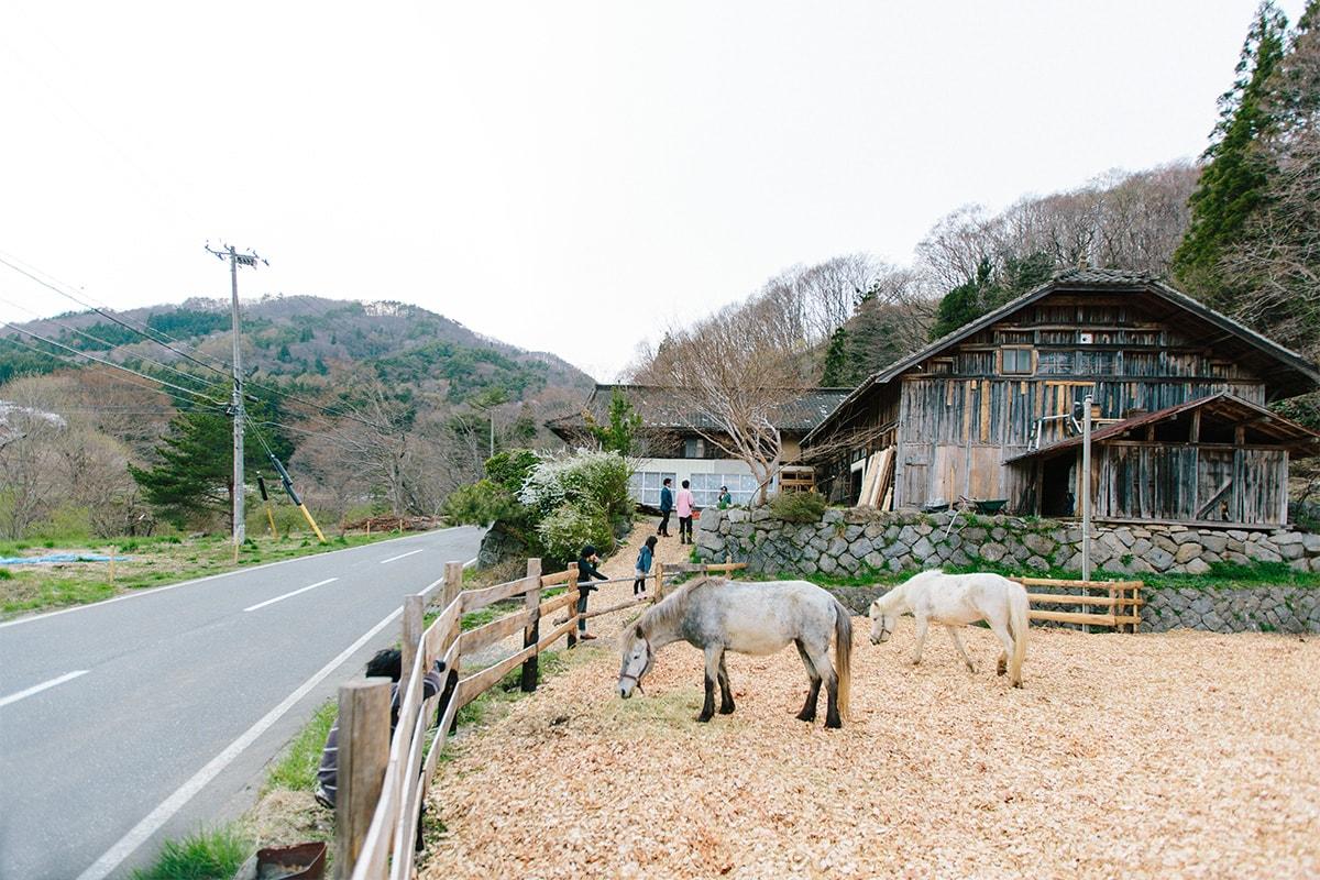 三陸駒舎 馬の庭