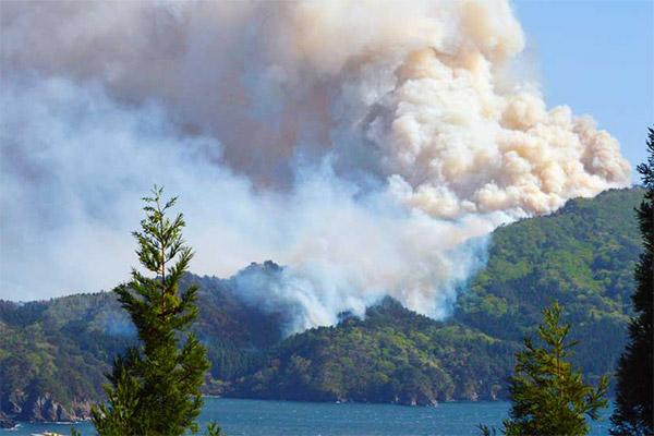 尾崎半島で山林火災、強風にあおられ延焼続く