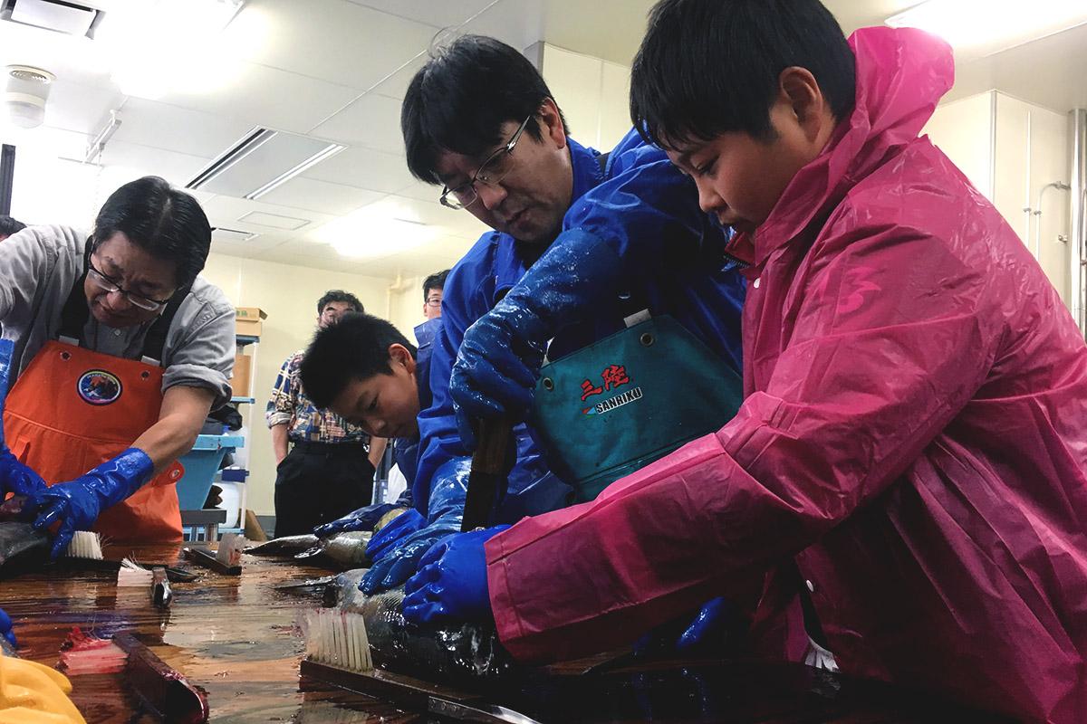 先生から教わりながら新巻鮭づくりに挑戦する児童