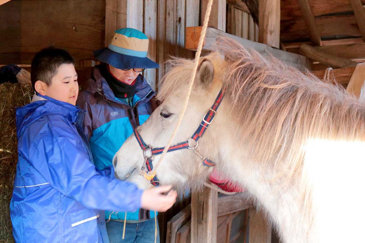 馬のぬくもりに触れ、命の大切さも感じながら世話をする男児(左)。自然と表情が和らぐ=12日午後