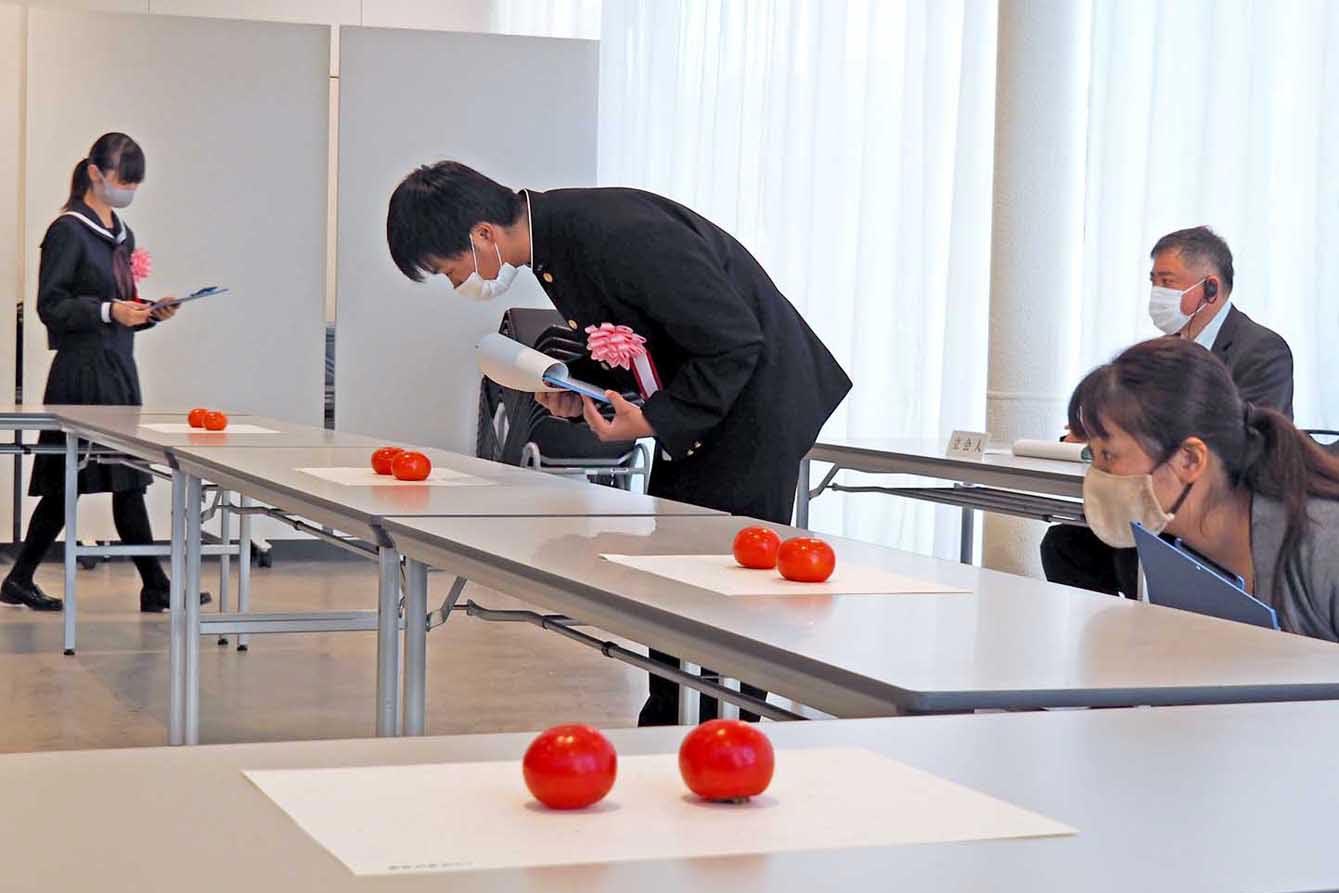出品された甲子柿を審査する委員