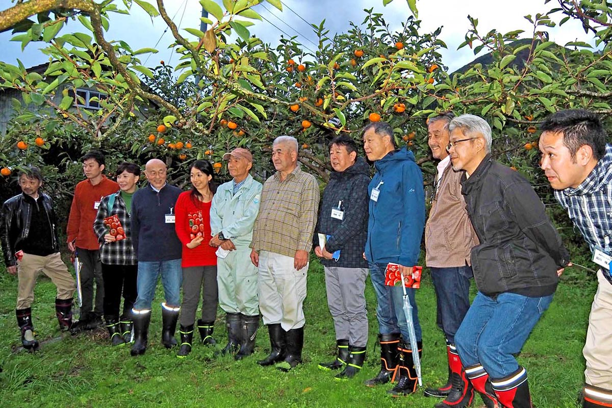 甲子柿の生産過程を見学した「食のキャラバン」一行
