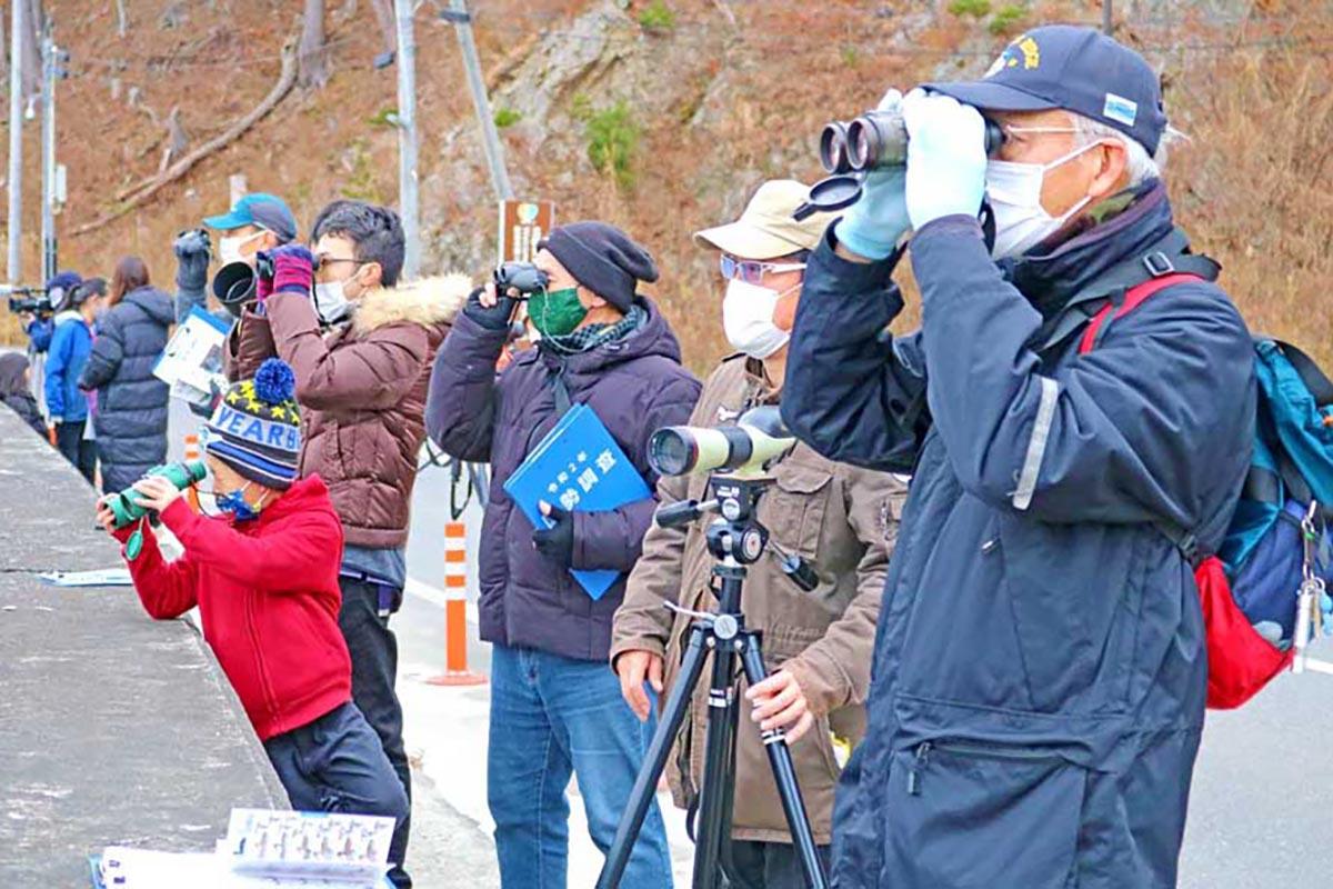 双眼鏡などで野鳥の姿を観察する参加者