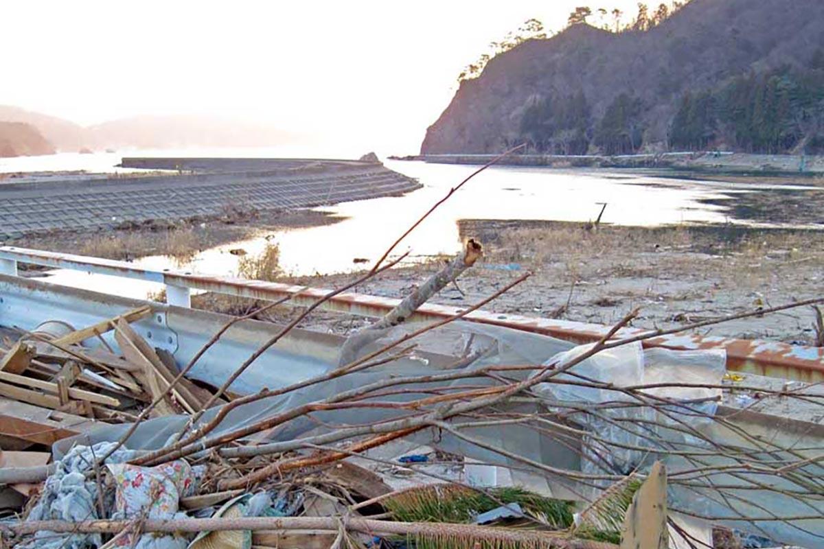 津波で多くの植物が失われた鵜住居川=2011年4月