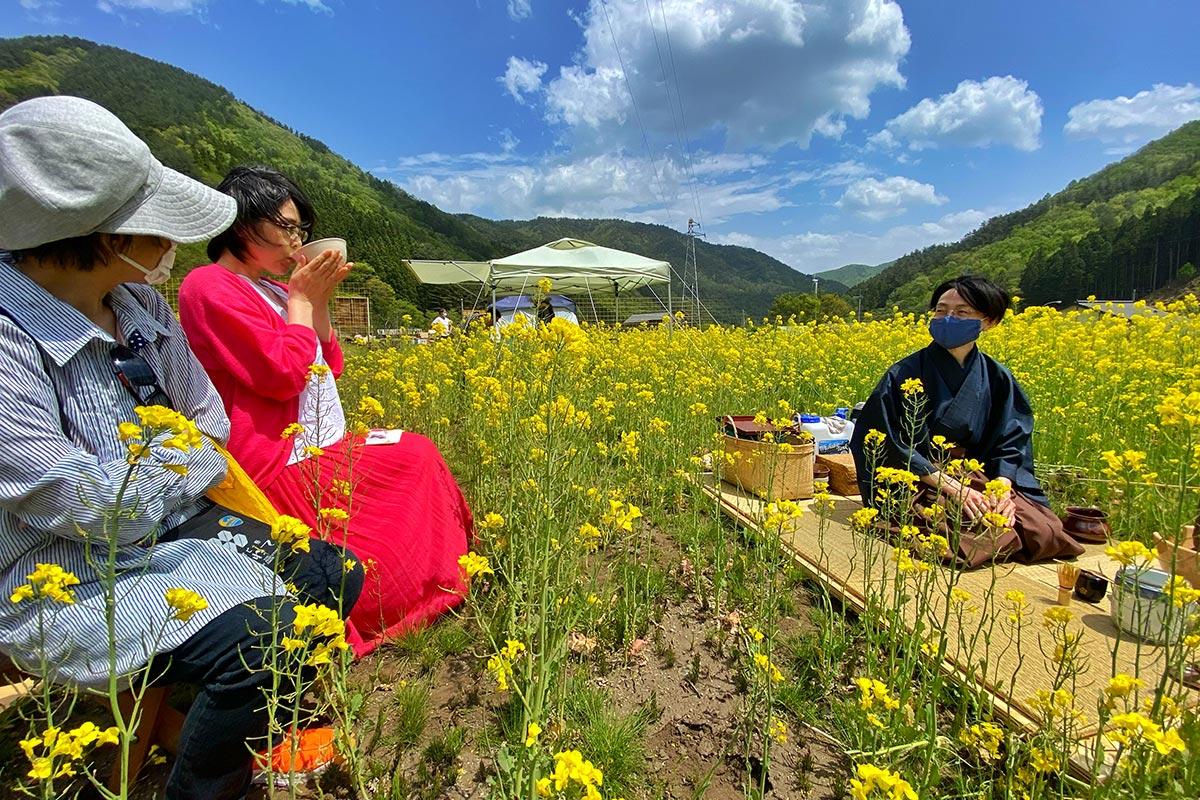 菜の花に囲まれた野だて席での一服は格別=9日(写真:山田周生さん撮影)