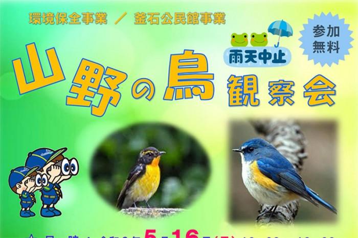 山野の鳥観察会