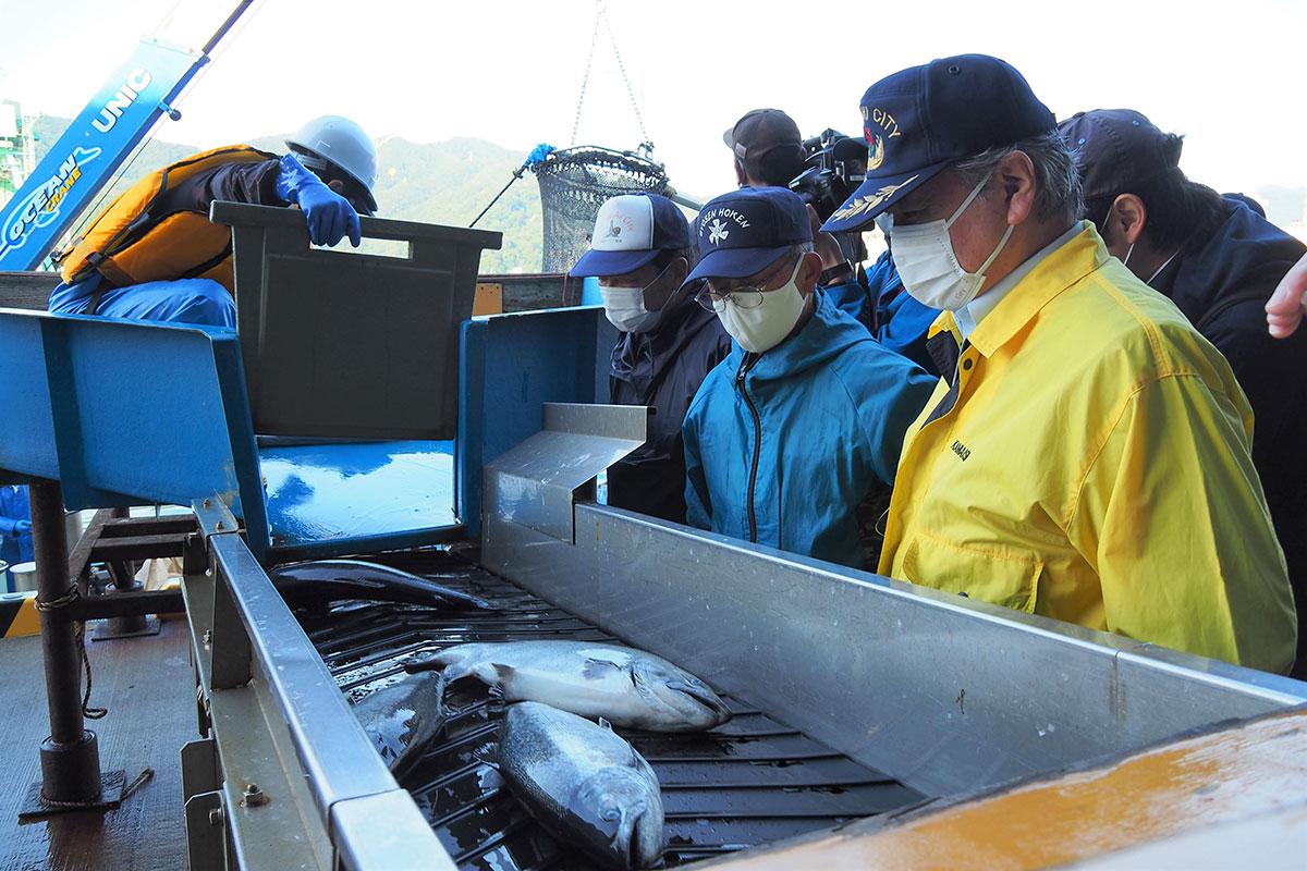 養殖サクラマスの初水揚げを見守る(手前右から)野田市長、細川組合長