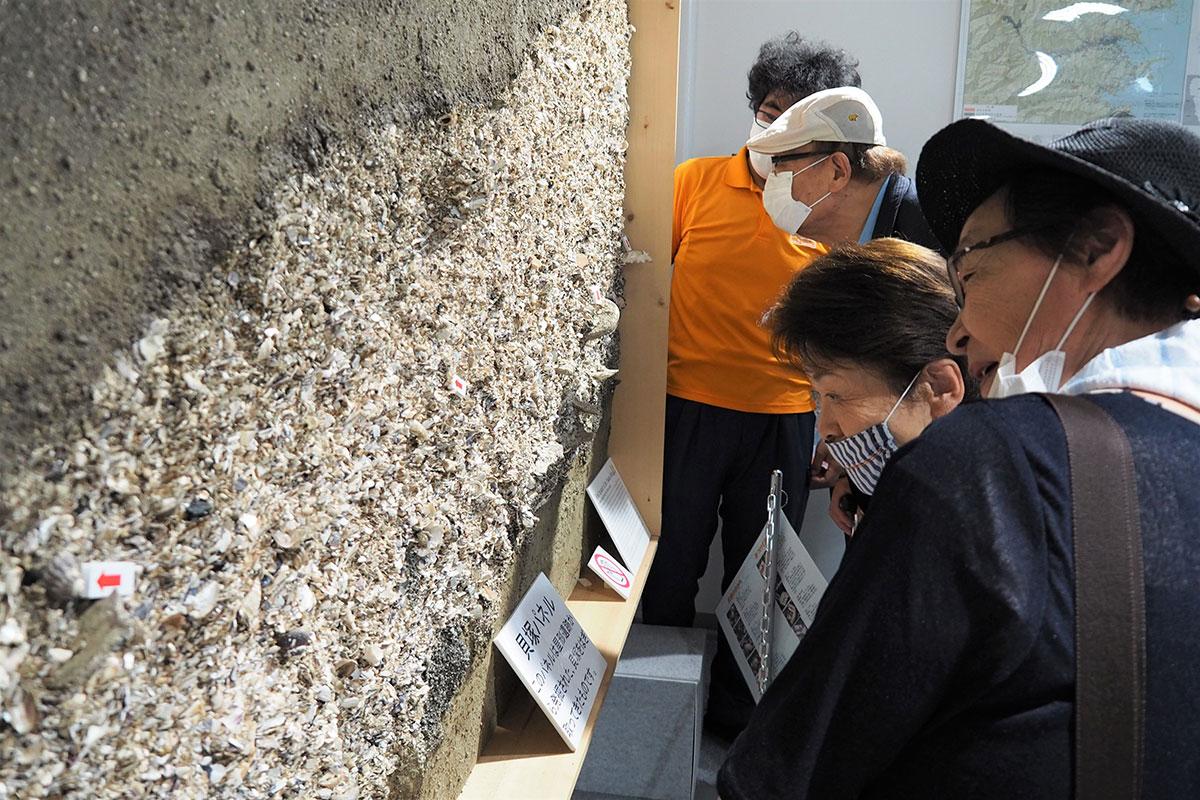 縄文時代の食生活を知ることができる「貝塚パネル」は常設展示されている=14日