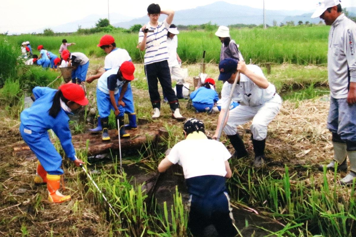 片岸町のビオトープで生き物探しをする鵜小児童。この場所は震災の津波で流失した