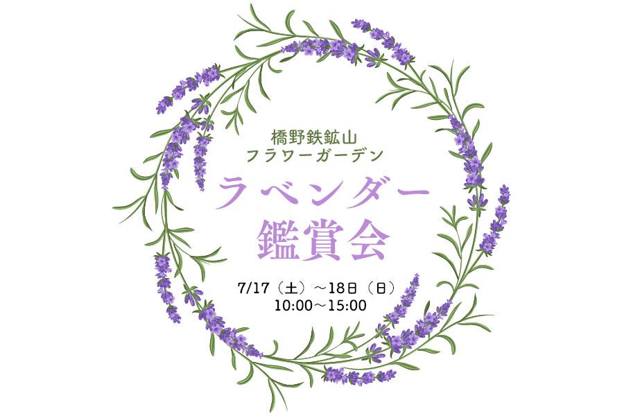 橋野鉄鉱山フラワーガーデン ラベンダー観賞会