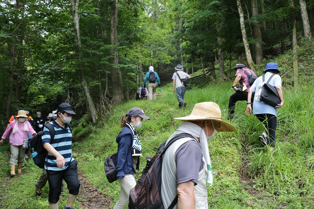 採掘場跡を目指して険しい道を進む参加者