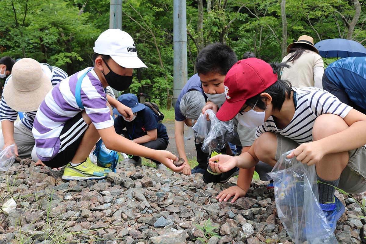 「何の石かな?」目を凝らし、鉱石を探す子ども