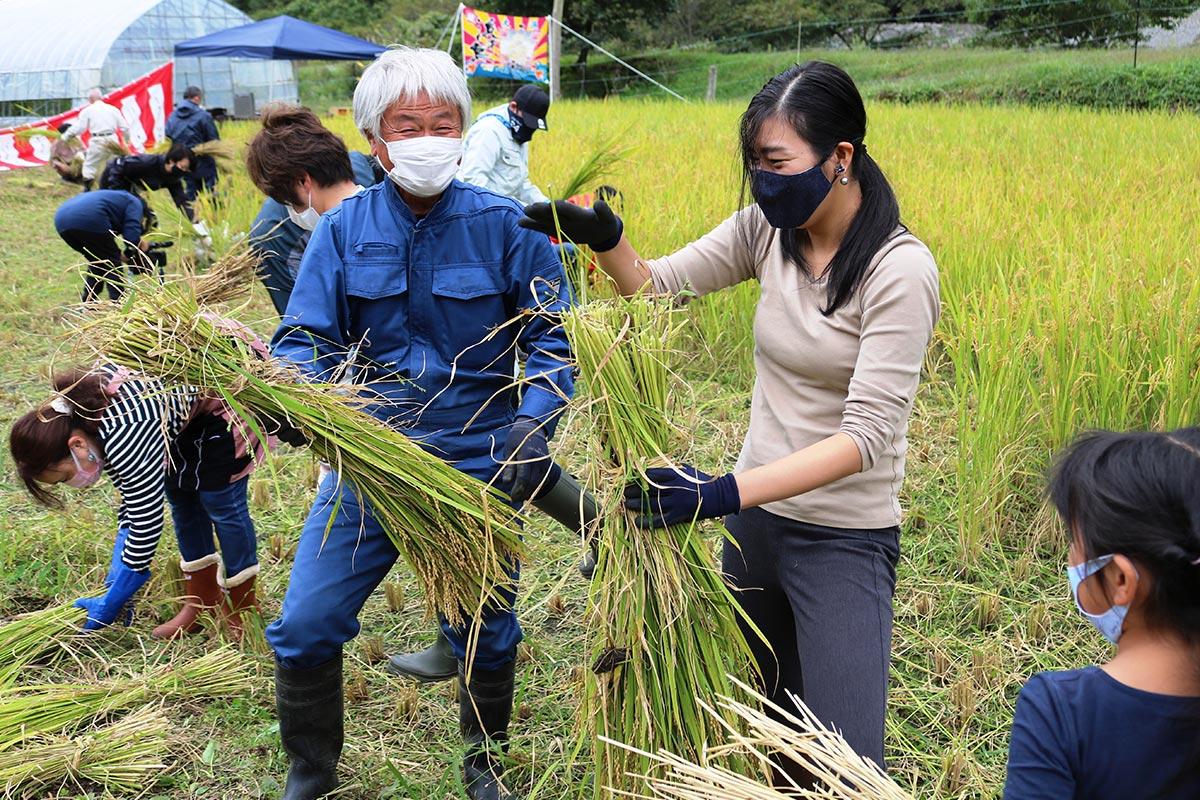 稲の束ね方のこつを教える佐々木重吾さん(青の作業着)