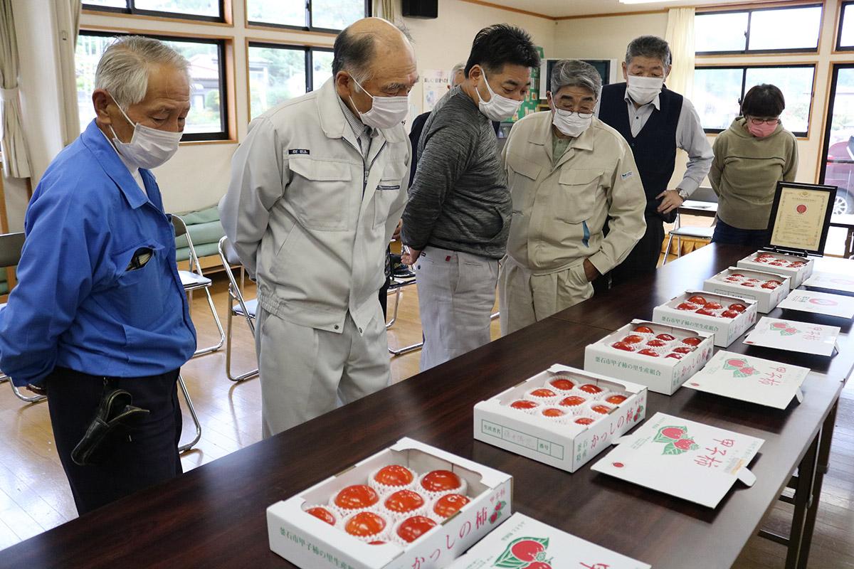 釜石の秋の味覚「甲子柿」出荷開始 ブランド力向上で全国から注目